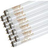 TL-lampen
